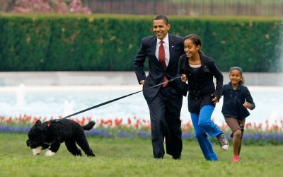 honden van obama