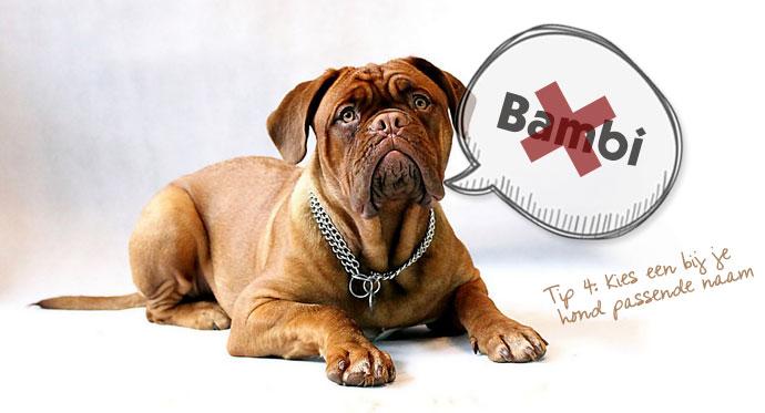 Tip 4: Kies een bij je hond passende naam