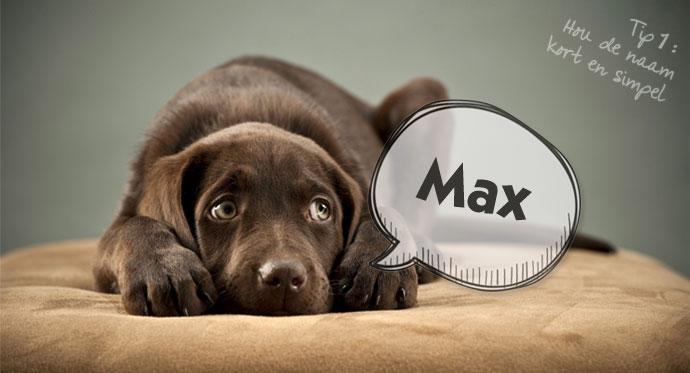 Tip 1: Korte en simpele hondennaam